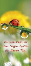 Magnetlesezeichen - 'Ich wünsche Dir den Segen Gottes für diesen Tag'