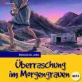 Überraschung im Morgengrauen - Hörbuch MP3