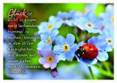 Glück - Postkarte